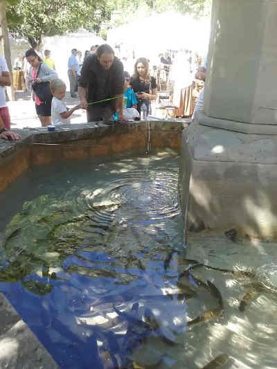 poisson lors de la fête paysanne